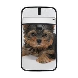 Animal Dog Yorkshire Terrier Fluffy Black Yellow Mix Small P