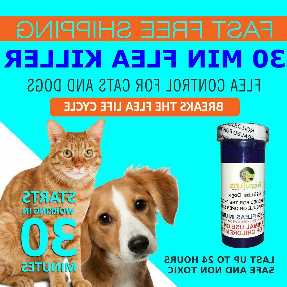 24 Tablets Flea Killer For Cats and Dogs 2-25 Lbs. 12 Mg Fre